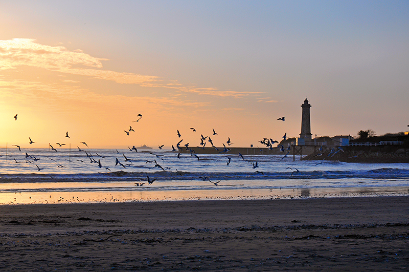 http://www.laboutiquederoyan.com/media/st_georges_soleil_phare_mouettespcmm36__027974800_1653_11072014.jpg